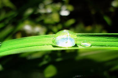 Droplet by BlackFireOpal