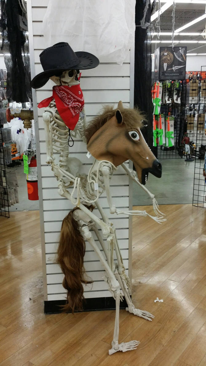 657a80c1384a9 Funny Skeletons  1 Save A Horse Ride A Skeleton by Molcat on DeviantArt