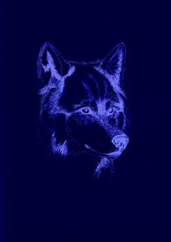 Wolf Sketch Inverted