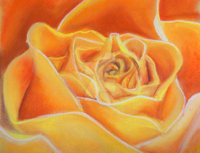 Rose fire