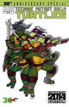 TMNT 30th Anniversary Special Variant by Dreven
