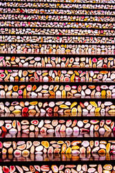 Seashelled Stairs