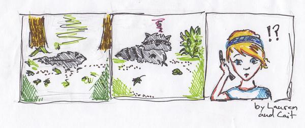 racoon encounter by vorbianca