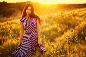 Belleza en los campos by ShakilovNeel