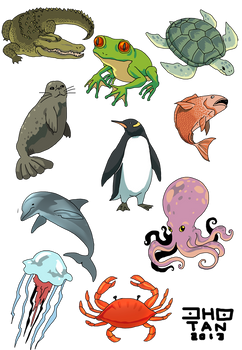 sea or water animals cliparts