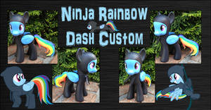 My Little Pony - Ninja Rainbow Dash Custom