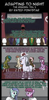 Adapting To Night: The Reborn 5