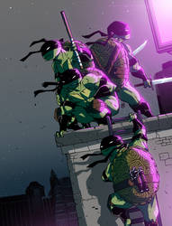 Teenage Mutant Ninja Tortoises