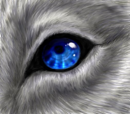 Black wolf with blue eyes drawing - photo#9
