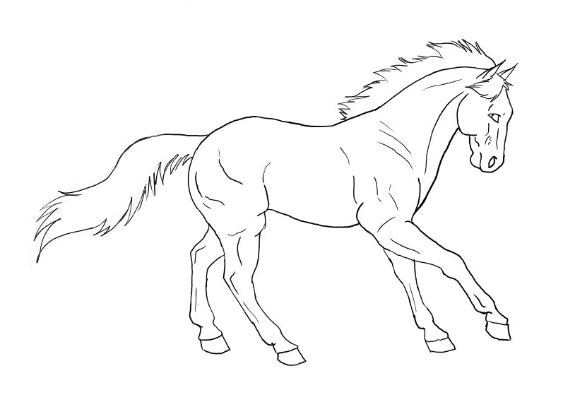 Horse cantering drawing for K9 fishing line
