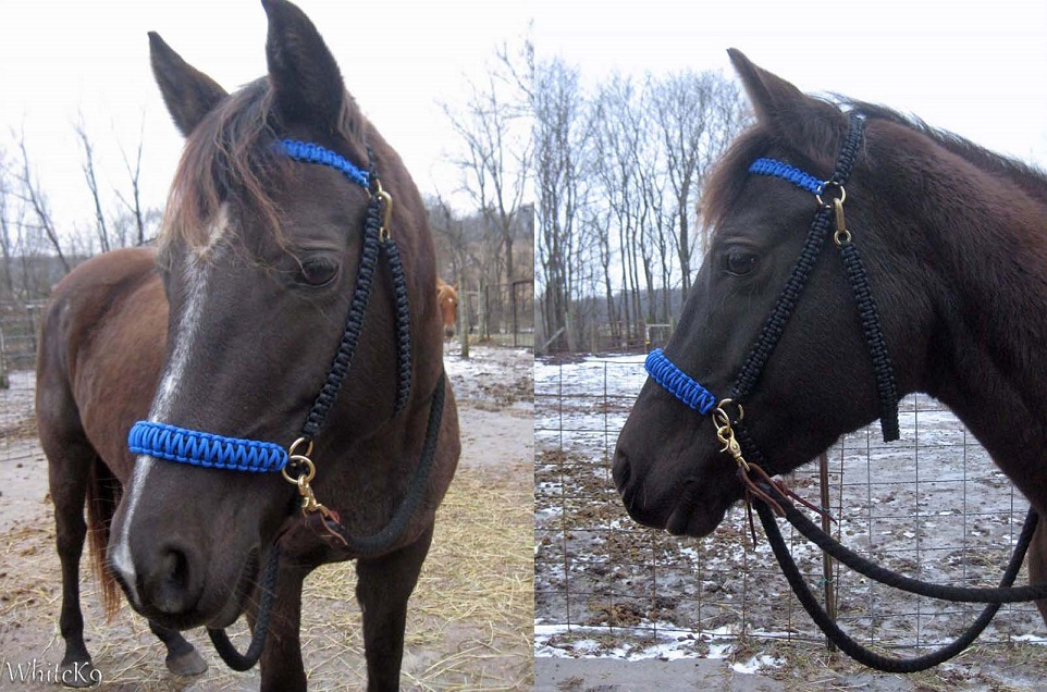 Paracord sidepull hackamore by whitek9 on deviantart for Paracord horse bridle