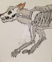 Dire Wolf Skeleton by Silverdreamstar31
