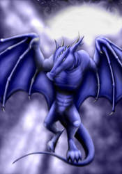 .: Midnight Flight :. by bluezjessi
