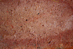 First Brick Texture by The-Auteur-Stock