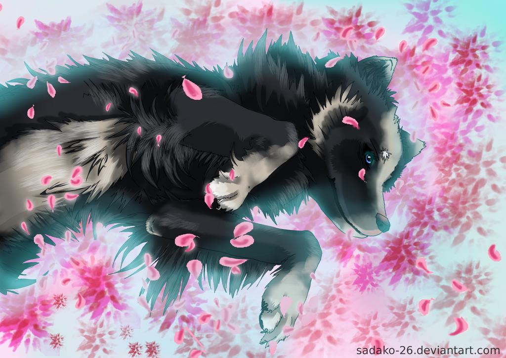 Noirin - On a Bed of Roses by Sadako-26