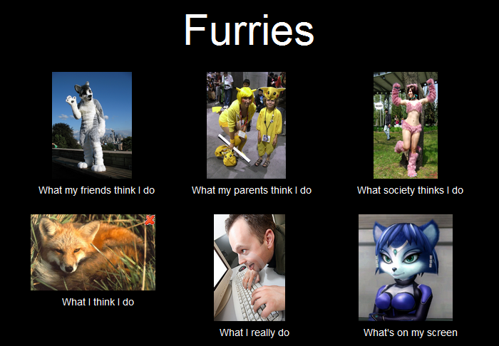 Furries: What people think I do by loyboys