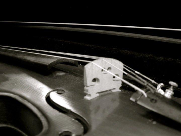Violin by KoruIkumi