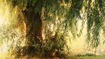 Summer haze by marjarah