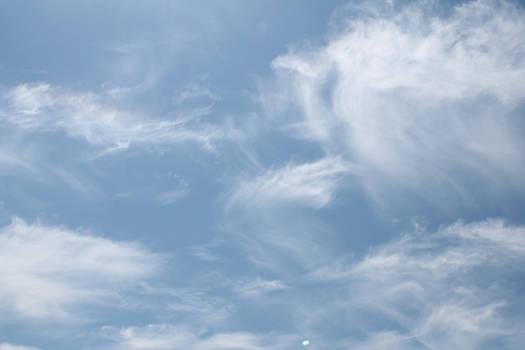 [138] Head in the Clouds