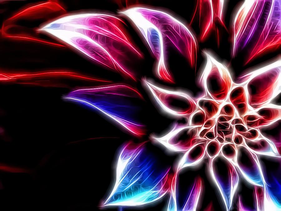 flower wallpaper by fun98 on deviantart