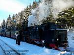 Die Harzer Schmalspurbahn - 2016 by AngelOfDarkness089