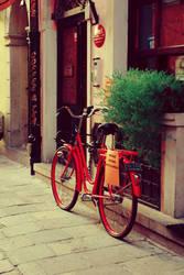Bicycle by niuniusiaa