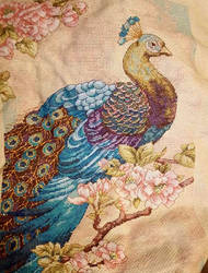 Peacock Cross stitch by WaterLily-Gems