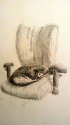 Cat sketch by ginnunga-gap