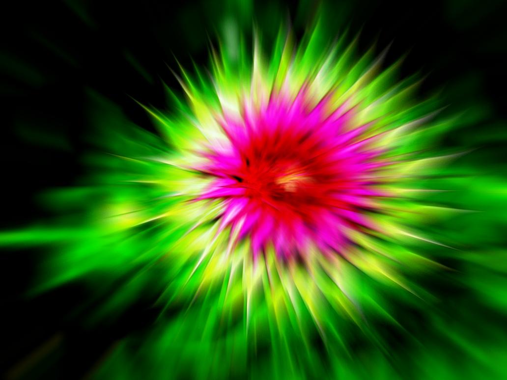 Flower Bloom by NaNo-PhReAk on DeviantArt for Animated Flowers Blooming  174mzq
