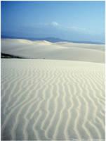 Desierto by nd-