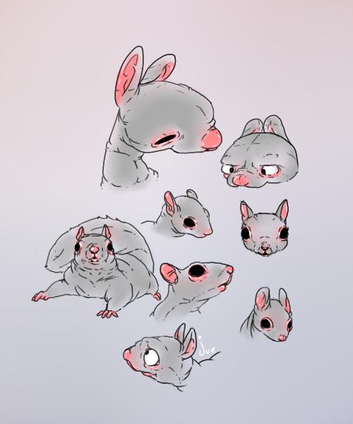 squirrel facies by juenavei