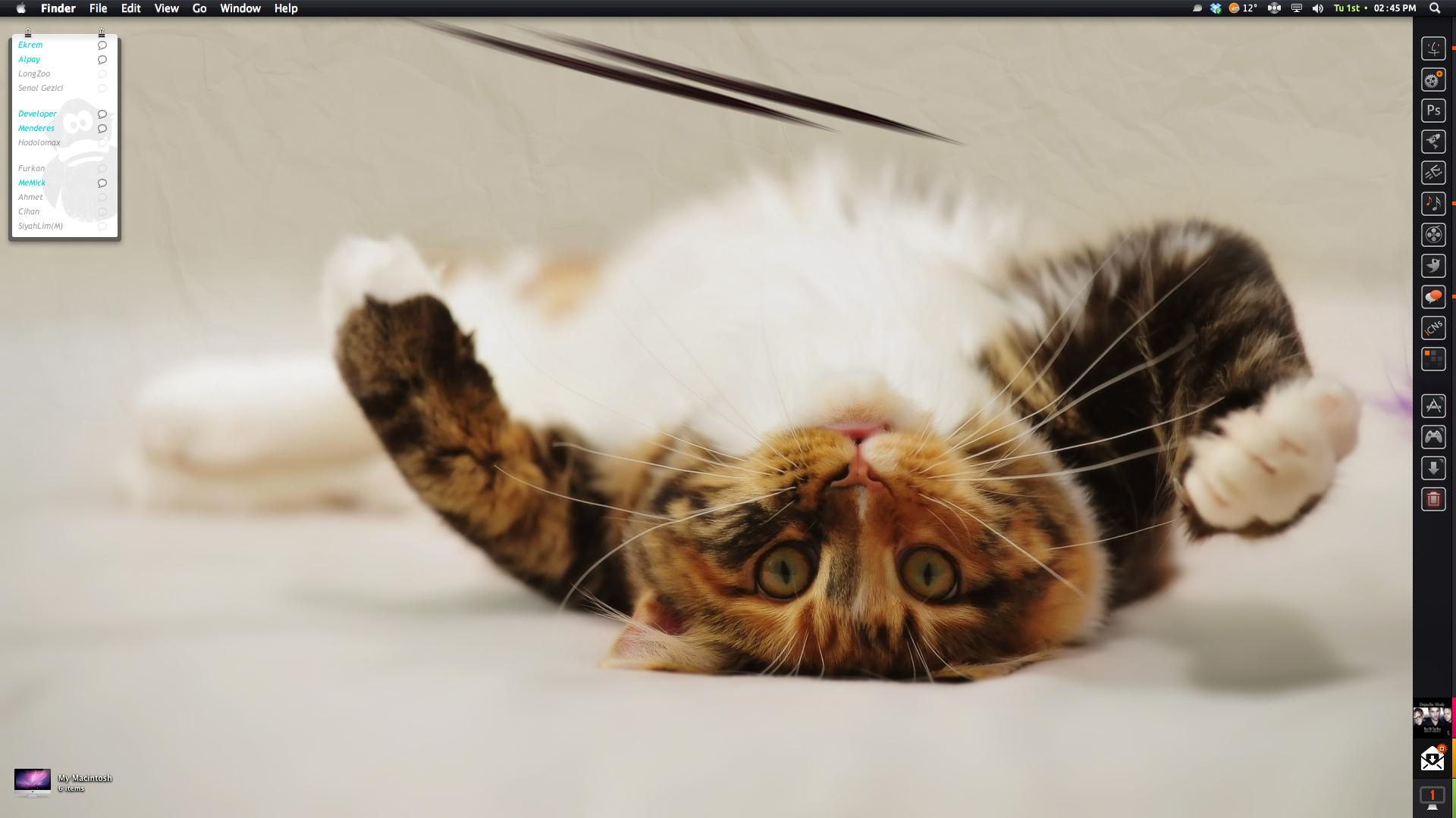 Catty by neodesktop
