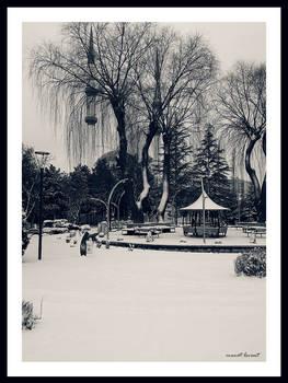 Winter from Ankara #1