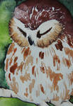 Sleepy Owl ACEO