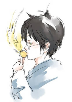 Kiss the Golden Snitch