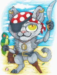 Pirate Kitty..ARGH