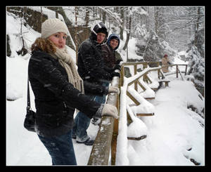 The snowy bridge