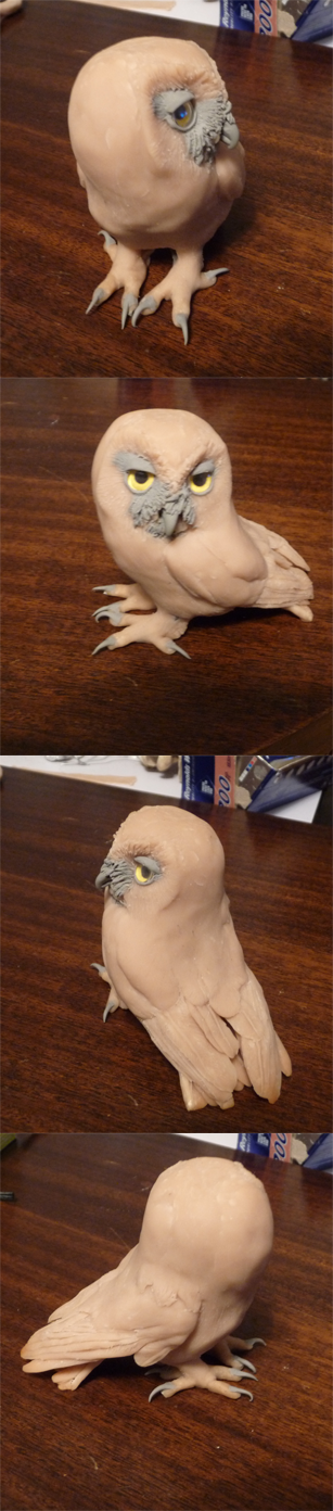 Saw Whet Sculpture WIP by Earldense