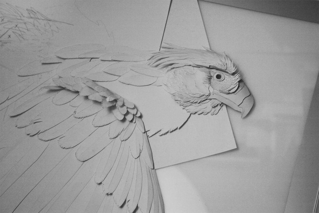 Philippine Eagle Paper Sculpture WIP by Earldense