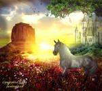 Horse enjoy Sunset