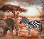 Rendezvous in Afrika