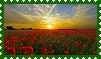 Stamp Of Poppiefield by Jassy2012