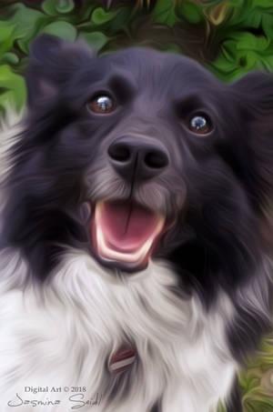 My Dog Bello by JassysART