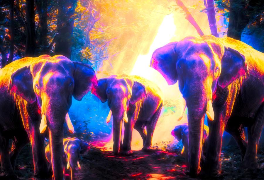 Elephants Family - Wallpaper by JassysART