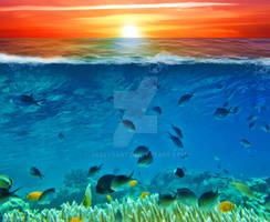Premium Premade BG Nature Underwater 711