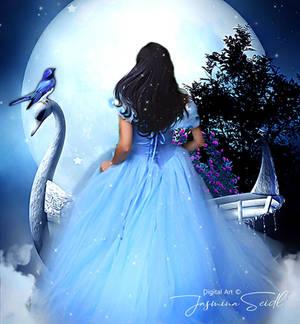 Cinderellas Dream