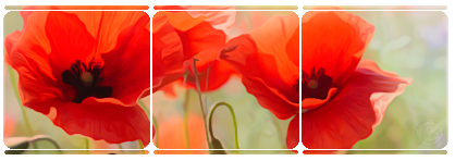 Divider Poppies Deco by JassysART