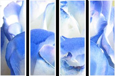 F2u Blue Roses Divider Decor by JassysART