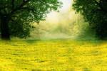 Premade Background Nature Stock 006
