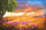 Premade Background Nature Stock 028